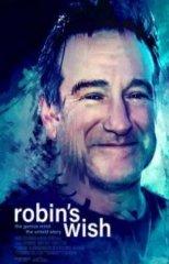 Скачать Воля Робина (2020) торрент