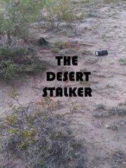 Скачать Сталкер в пустыне (2019) торрент