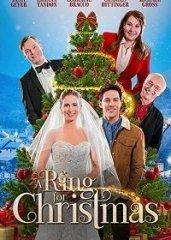Скачать Кольцо на Рождество (2020) торрент