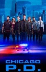 Скачать Полиция Чикаго (8 сезон) торрент