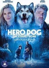 Скачать Собака-герой: Путешествие домой (2021) торрент