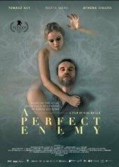 Скачать Идеальный враг (2020) торрент